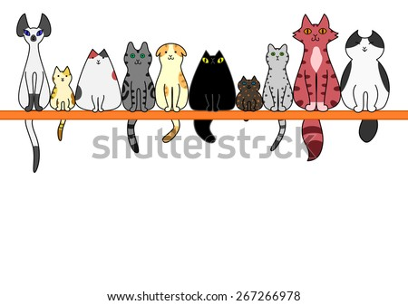 Cats front in a row with copy space - stock vector