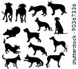 Cats silhouette collection - stock vector