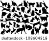 Cats silhouettes set. Vector illustration on EPS 8 - stock photo