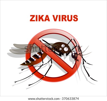 Caution of mosquito icon, spread of zika and dengue virus. (Vector Design)