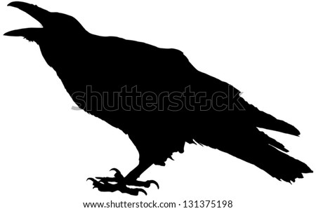 Cawing raven vector silhouette - stock vector