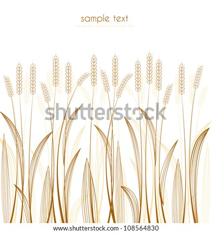 cereal grass on white background - stock vector