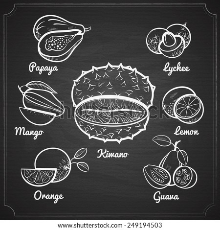 chalk painted exotic fruit set on black chalkboard vector illustration