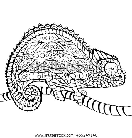 Chameleon Coloring Book Page Line Art Hand Drawn Vector Illustration