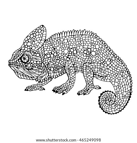 chameleon pens coloring pages | Chameleon Outline Stock Images, Royalty-Free Images ...