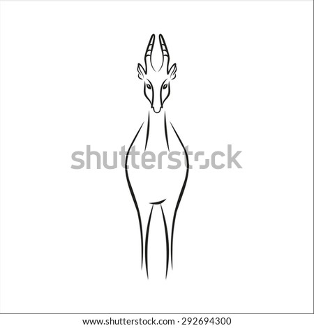 Chamois Stock Vectors Images Vector Art Shutterstock