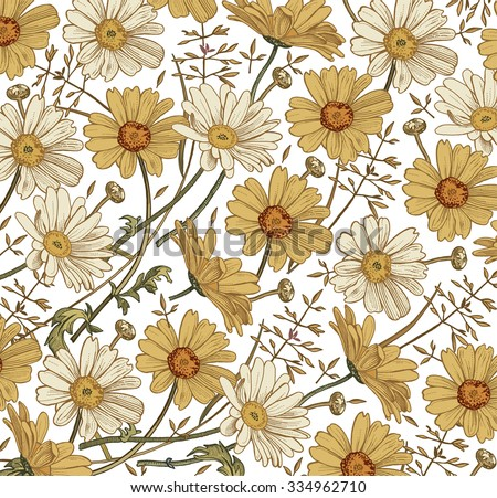 Chamomile Grass Wildflowers. Drawing, engraving.  Freehand drawing. Beautiful vintage background with blooming flowers. White yellow realistic flowers. Flora. Herb. Vintage vector stock illustration.  - stock vector
