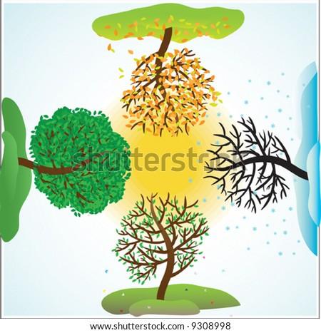 Change of seasons of year. Vector illustration - stock vector