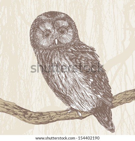 charming owl, hand drawing, vector illustration - stock vector
