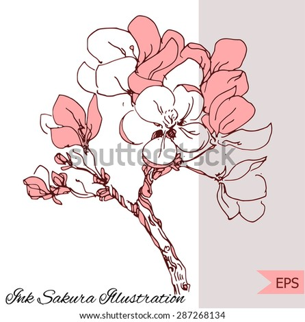 Cherry blossom bouquet illustration isolated.