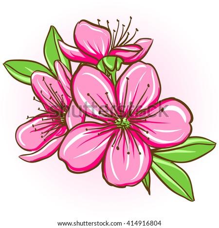 Cherry blossom. Decorative floral illustration of sakura flowers - stock vector