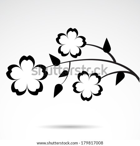 Black And White Cherry Blossom Vector Stock Vector Cherry Blossom