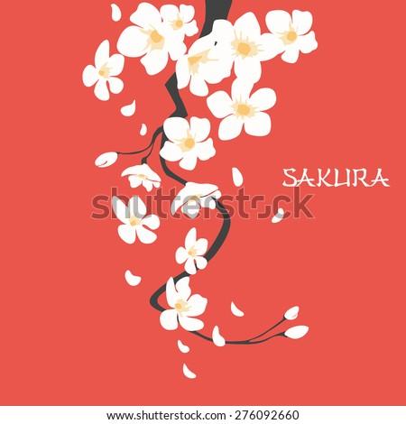 Cherry blossom, japanese sakura branch with flowers. flat design - stock vector