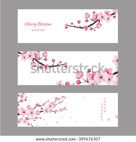 cherry blossom realistic vector, sakura, japan, blur background