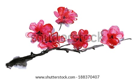 Cherry blossom. Sakura flowers. Floral background. Branch with pink flowers. Vector