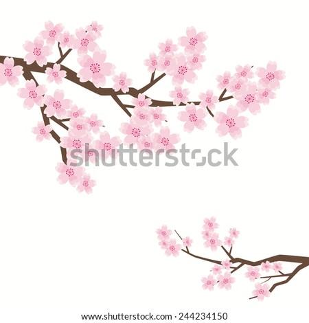 Cherry blossom tree - stock vector