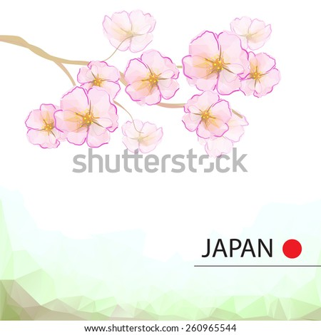 Cherry blossom tree. Spring background - stock vector