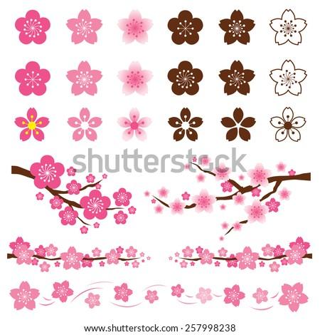 Cherry Blossoms or Sakura flowers Ornament - stock vector