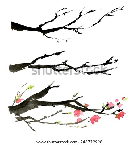 Cherry branches. Seasonal background. - stock vector