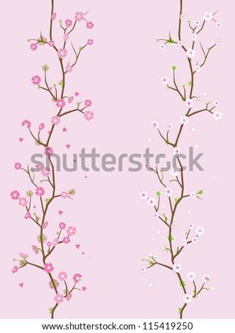 cherry flower background - stock vector