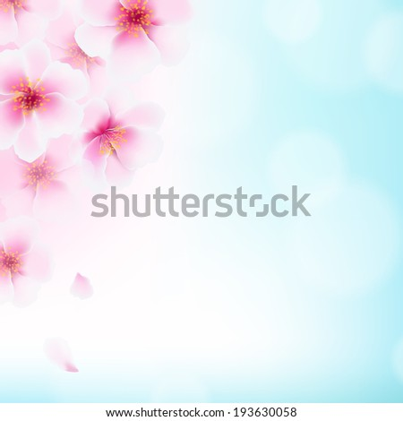 Cherry Flowers, With Gradient Mesh, Vector Illustration - stock vector