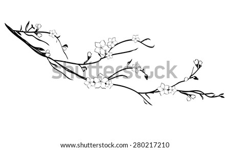 Cherry tree branch silhouette - stock vector