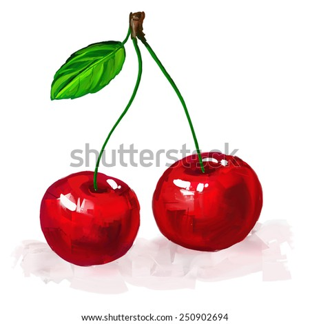 cherry vector illustration  hand drawn  painted watercolor  - stock vector