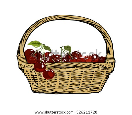 cherry. Wicker basket. Vector