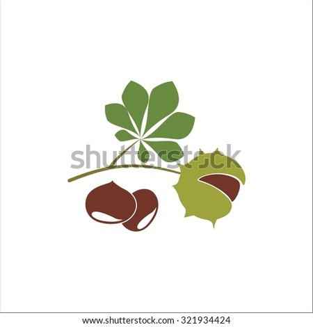 Chestnut - stock vector