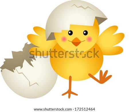Chick Leaving Cracked Egg  - stock vector