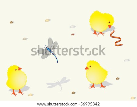 Chickens in sun weather - stock vector