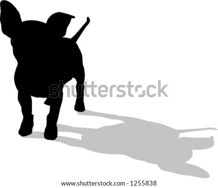 chihuahua dog - stock vector