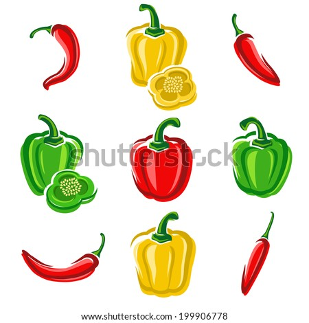 Chili and pepper set. Vector - stock vector