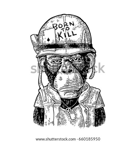 chimpanzee monkey dressed human soldier helmet stock vector royalty