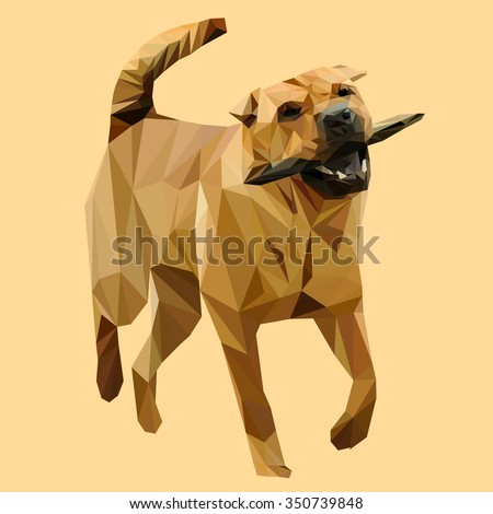 Chinese dog Shar-Pei low poly design. Triangle vector illustration.  - stock vector