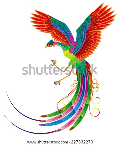 Chinese Phoenix - stock vector