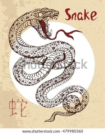 snake tattoo stock images royalty free images vectors shutterstock. Black Bedroom Furniture Sets. Home Design Ideas