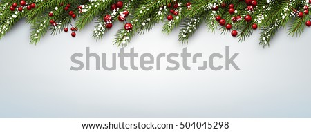 Christmas banner with fir branches and holly berries. Vector illustration.