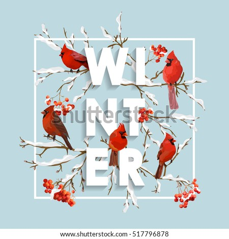 Christmas Design in Vector. Winter Birds with Rowan Berries Retro Background. T-shirt Fashion Graphic.