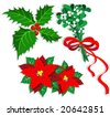 Christmas flowers. Vector illustration - stock vector