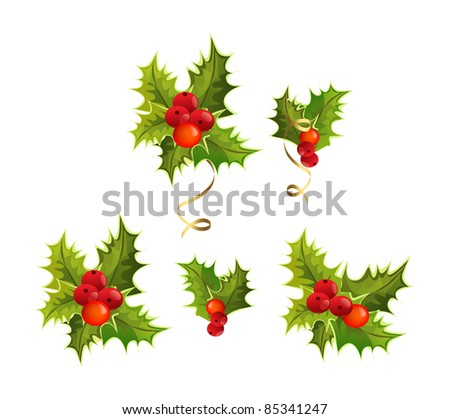 christmas's holly - stock vector