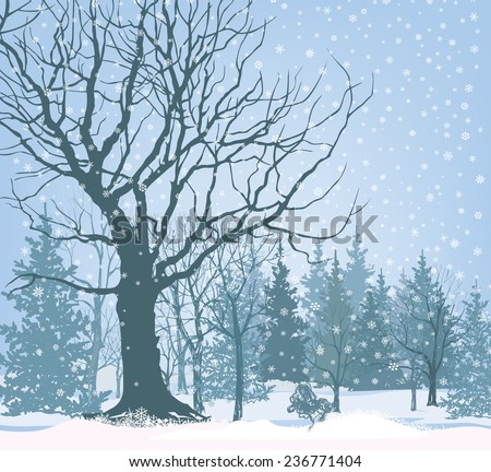 Christmas snow landscape wallpaper. Snowy forest background. Tree without leaves over snow.  Winter garden. - stock vector
