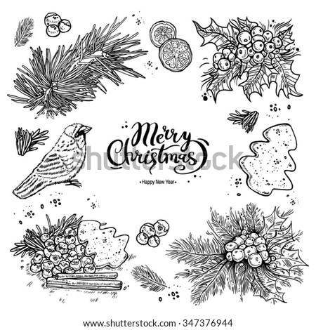 Christmas symbols, set. Holly, needles, bullfinch, calligraphy, black line on a white background, vector illustration - stock vector