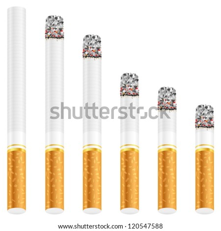 Cigarette set on a white background. Vector illustration.