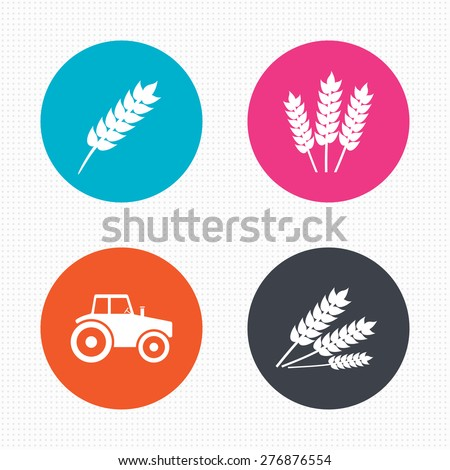 Circle buttons. Agricultural icons. Wheat corn or Gluten free signs symbols. Tractor machinery. Seamless squares texture. Vector - stock vector