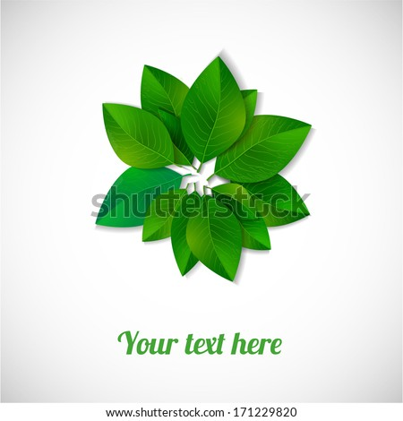 Circle of green leaves isolated on white background. Vector illustration. - stock vector