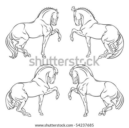 Circus horse - stock vector