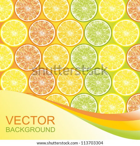 Citrus background. - stock vector