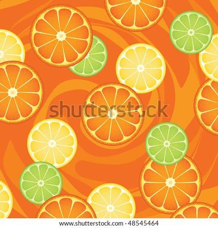 Citrus fruit slices - stock vector