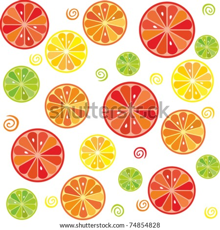 citrus seamless vector pattern. Isolated on white background. Vector illustration